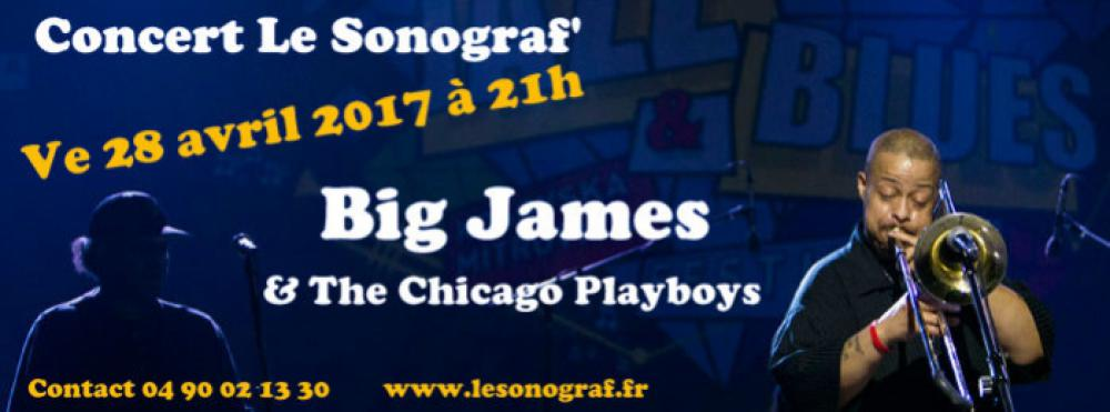 Big James & The Chicago Playboys en concert
