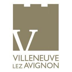 30400 - Villeneuve-lès-Avignon