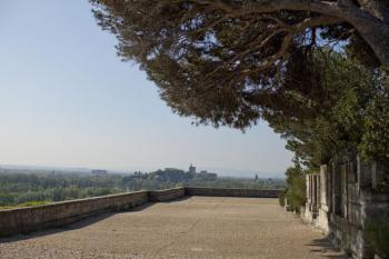 Abbaye Saint-André Vue des terrasses sur le Palais des Papes