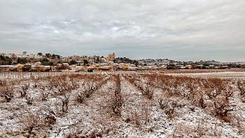Rochefort du Gard (et ses vignes) sous la neige (hiver 2014-15)