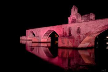 Octobre Rose 2015 Pont St Benezet