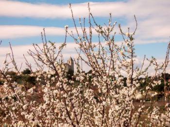 Rochefort du Gard (07/03/2016)