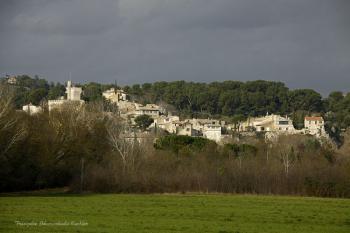 Villeneuve lez Avignon, vue de la Barthelasse