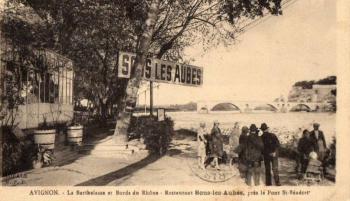 Avignon, la Barthelasse et bords du Rhône - sous les aubes