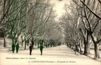 Promenade des platanes - Carpentras