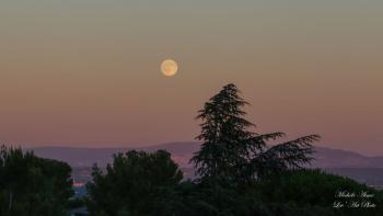 Lune d'été sur fond de ciel rosé