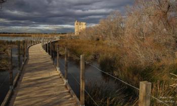 Promenade à la tour carbonnière