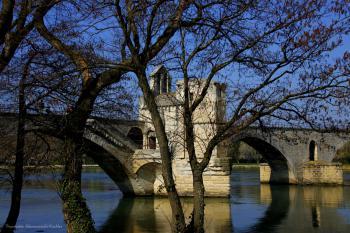 Le pont st bénézet sous un grand ciel bleu